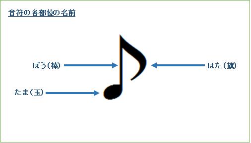 音符を構成する3つのパーツ