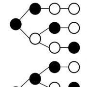 白玉黒玉の順列問題の解答